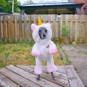 Pandaloon Walking Unicorn Dog Costume